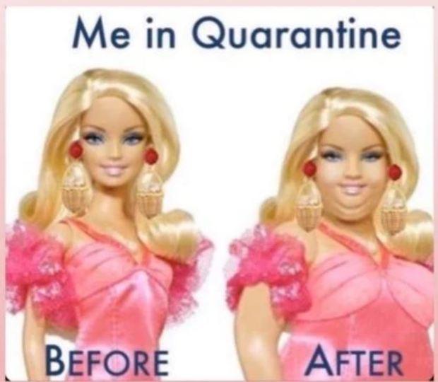 Quarantine Barbie
